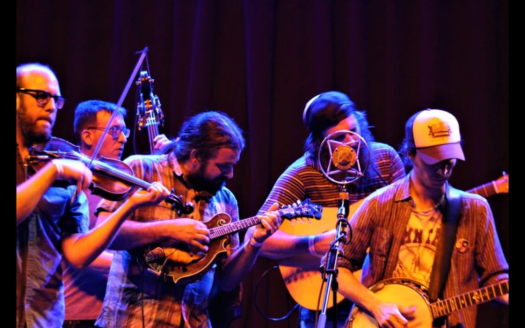 Shelf Life String Band at Thunderbird Cafe